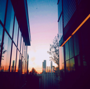 Instagram: ybaznath